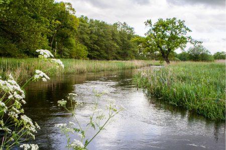 Nationaal Park Drentsche Aa